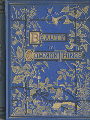 Beauty For Commerce: Beauty in Common Things
